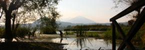 Natura in cammino – Alla scoperta dei tesori naturalistici del Lazio