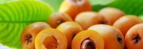Nespole: il frutto lassativo che abbassa il colesterolo, previene il cancro e triplica le difese
