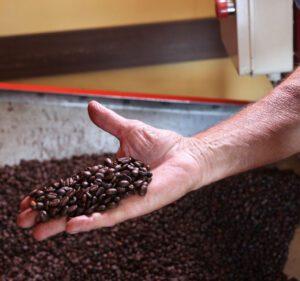 Caffè di Guarcino